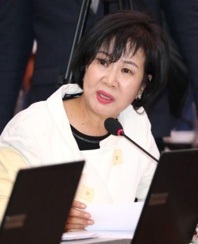 손혜원 더불어민주당 의원. 사진=연합뉴스