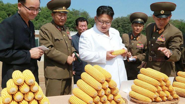 남북농업협력 기초 다지기…정부, 3500만원 연구용역