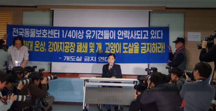 지난달 19일 동물권단체 케어 박소연 대표가 서울 강남의 모처에서 기자회견을 열고 '구조동물 안락사 논란'에 대한 입장을 밝히고 있다.