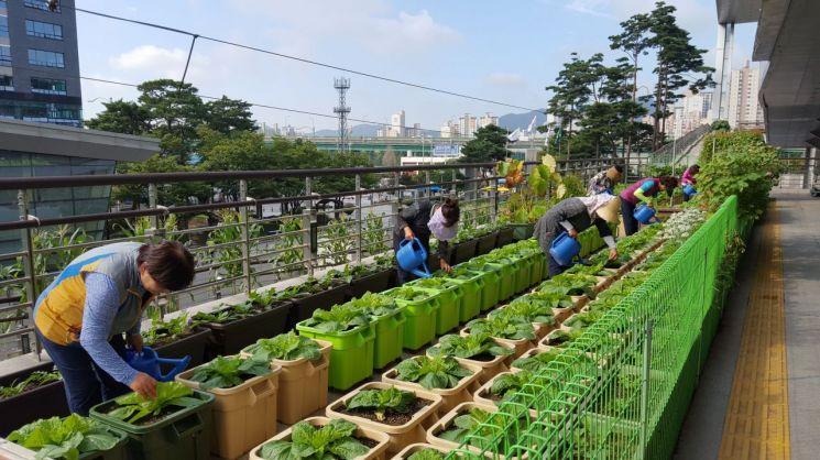 금천구, 지역공동체일자리사업 참여자 모집