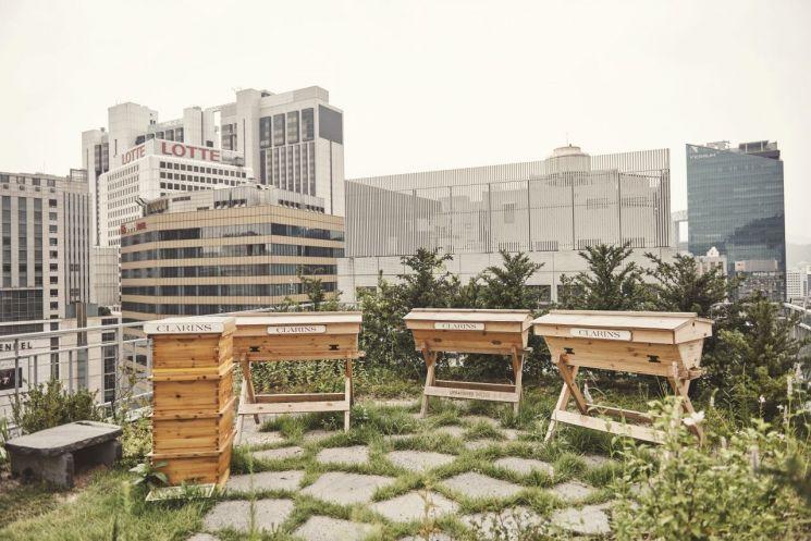 명동 한 건물 옥상에 설치된 벌통. [사진=성동구청]
