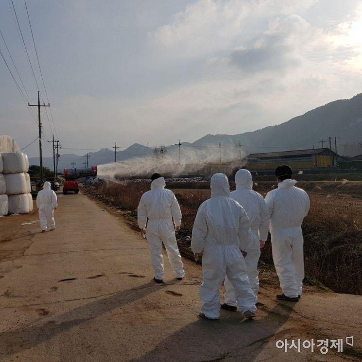 광주시, 구제역 확산방지 '총력'…지역재난안전대책본부 운영