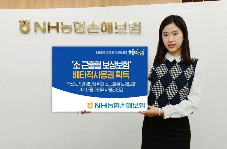 NH농협손보, 소 근출혈 보상보험 배타적사용권 획득