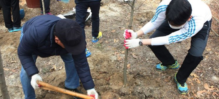 """강북구 """"미세먼지 먹는 나무 심을 땅 찾습니다"""""""
