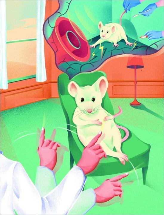 실험 동물인 생쥐가 공포기억을 떠올리면서 좌우로 눈동자를 움직이는 안구 운동이 동시에 이뤄졌을 때, 공포반응 감소 효과가 더 빠르게 나타난다. (제공: IBS, 일러스트=제니곽)