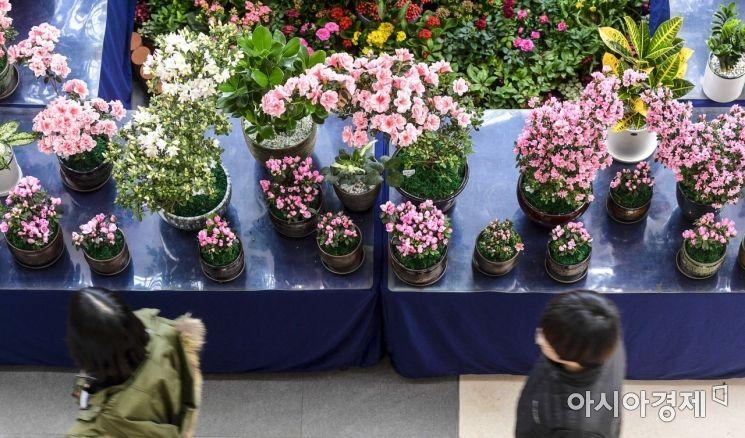 [포토]봄이 오는 소리