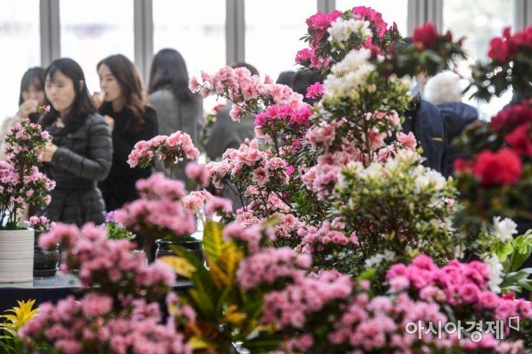 [포토]눈 앞에 다가온 봄