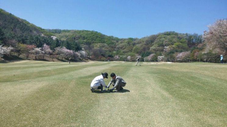 골프장 농약검사