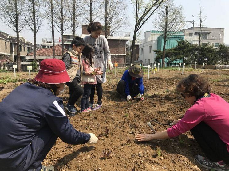 서울어린이대공원 텃밭프로그램 [사진=서울시 제공]