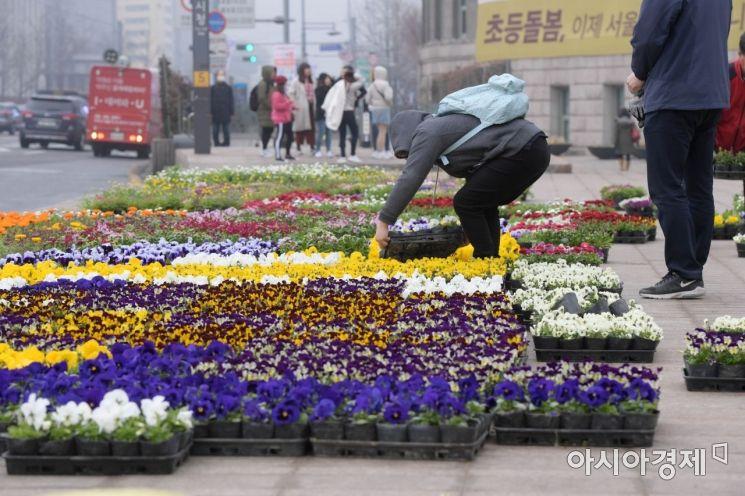 [포토]'봄이 온다'