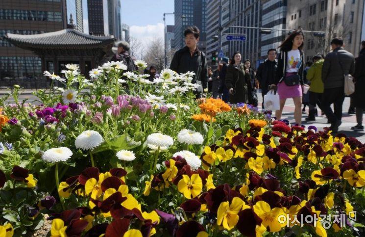 [포토]성큼 다가온 봄
