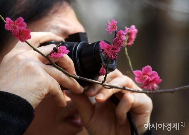 [포토]'카메라에 봄을 담아요'