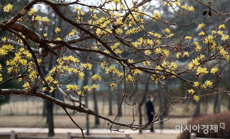 [포토] 봄날의 오후