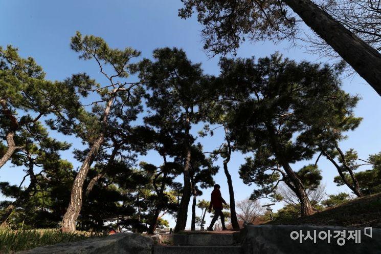 [포토]싱그러운 봄 산책