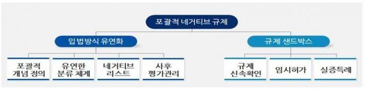 '행정규제기본법' 개정…규제혁신 '1+4법' 체계 완성