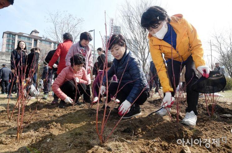 [포토] 식목일 앞두고 나무 심는 시민들