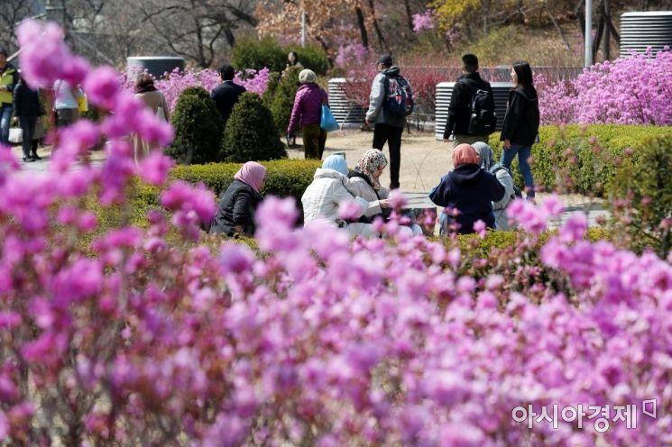[포토]봄날의 추억