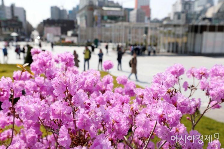 [포토]두근두근 봄날 캠퍼스