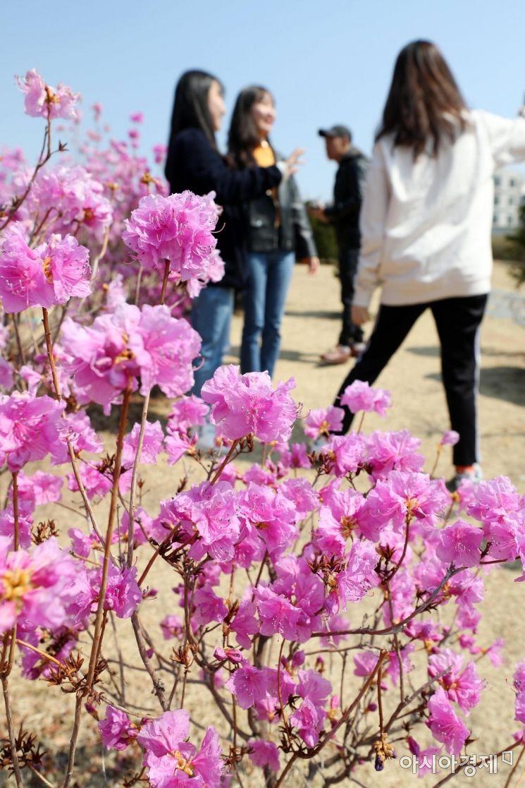 [포토]향긋한 봄내음