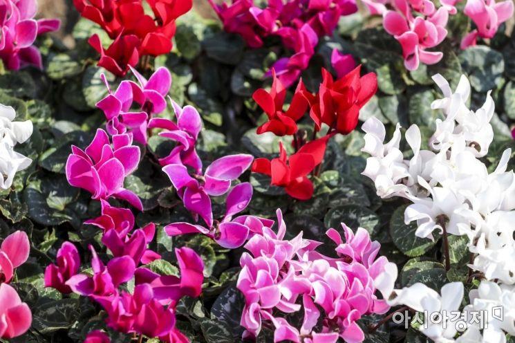 [포토] '완연한 봄'