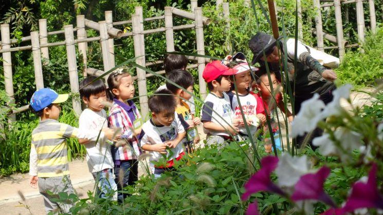 숲체험 유아생태교실