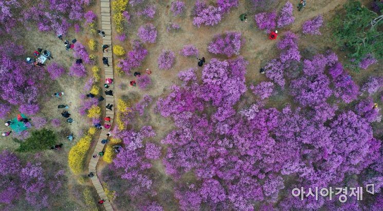[포토]'꽃길만 걷자'