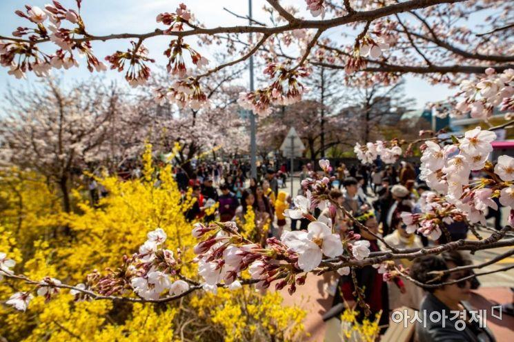 [포토] '봄이 왔어요'