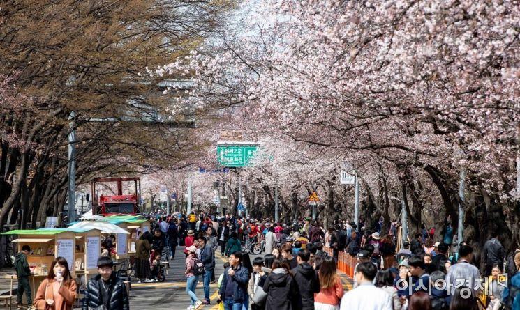 [포토] 봄의 정취 만끽하는 시민들