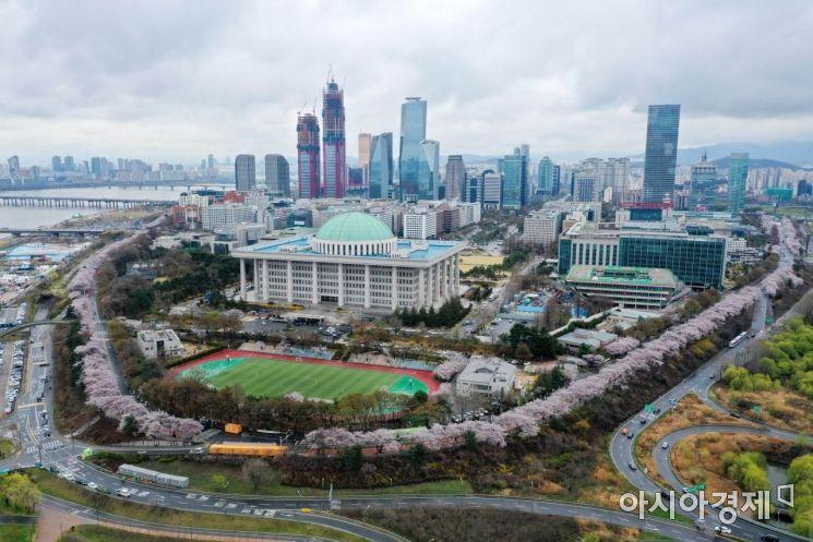 봄비가 내린 서울 여의도 국회의사당이 연분홍빛 벚꽃으로 둘러싸여 있다. /문호남 기자 munonam@