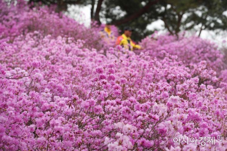 두근두근 설레는 봄. 부천 원미산을 찾은 시민들이 봄을 즐기고 있다. /문호남 기자 munonam@
