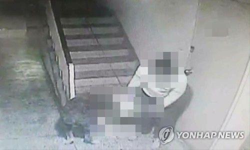 부산 한 아파트 복도에서 대형견이 30대 남성을 공격[부산경찰청 제공]