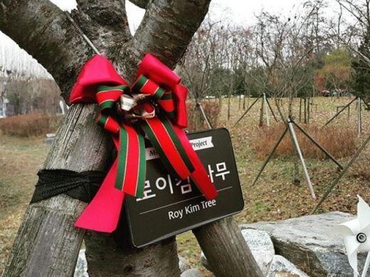로이킴숲 / 사진=로이킴 인스타그램 캡처