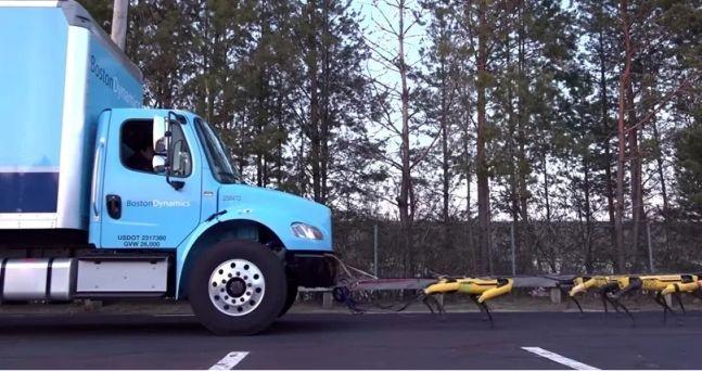 보스턴 다이내믹스(Boston Dynamics)의 사족 보행 로봇 '스팟미니(SpotMini)'사진=유튜브 캡처