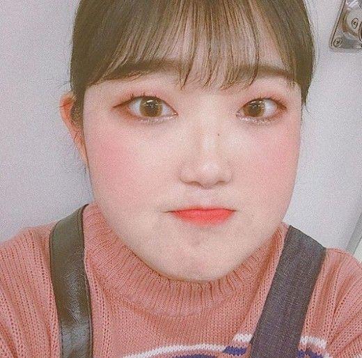 고(故) 최진실 딸 최준희 양이 근황을 공개했다/사진=최준희 인스타그램