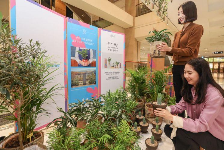 현대백화점, 사회적기업 손잡고 공기정화 식물 전문 팝업스토어