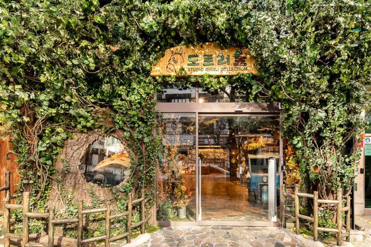 '도토리 숲' 홍대점의 모습 (사진=대원미디어 제공)