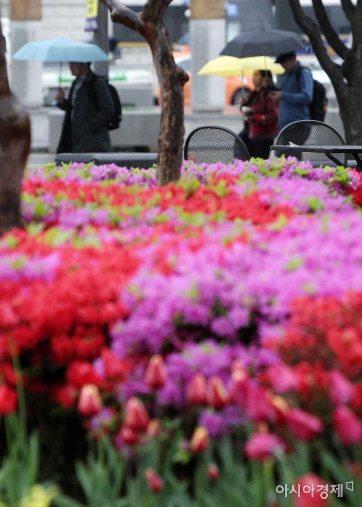 [포토] 봄비 내리는 광화문 거리