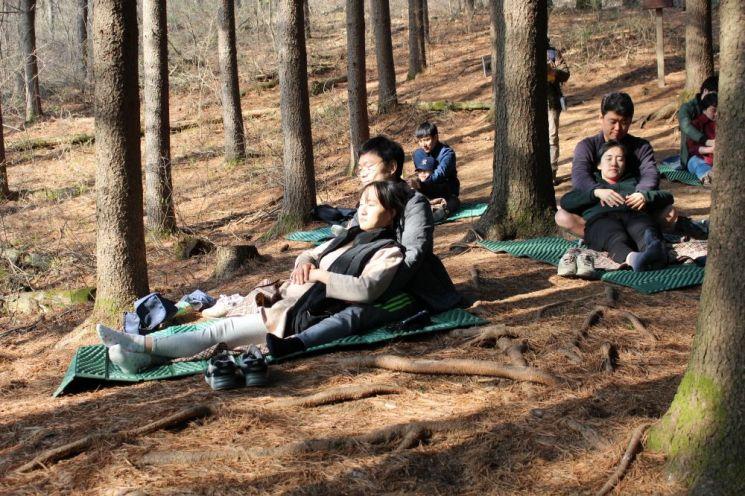 [포토] 건강한 태교, 횡성숲체원서 '숲 태교 페스티벌'