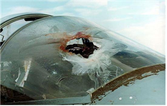 새와 충돌해 조종석에 피해를 입은 모습. 새 자체는 2kg 남짓한 무게를 가지고 있지만, 빠른 속도로 날아가는 비행기와 부딪힐 경우에는 수십톤의 힘이 기체로 전달돼 큰 피해를 일으킬 수 있다.(사진=국토교통부)