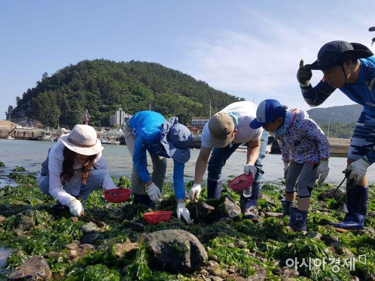 전남에서 먼저 살아보기 농촌체험프로그램의 여수 갓고을마을 갯벌체험