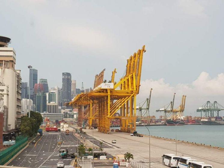 무역전쟁에 수출 11.7% 급감…싱가포르는 운다