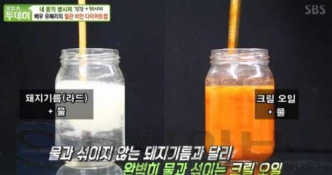 (사진=SBS '생방송투데이' 방송장면 캡쳐)