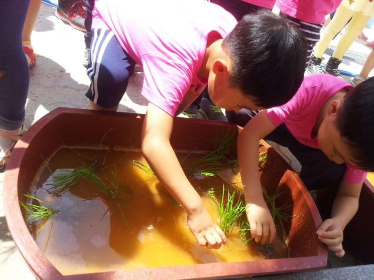 성북구 '찾아오는 농촌체험교실' 운영