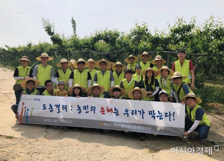 NH농협손해보험은 25일 경기도 이천시 수도원 농장에서 농촌 일손돕기를 실시했다고 27일 밝혔다.