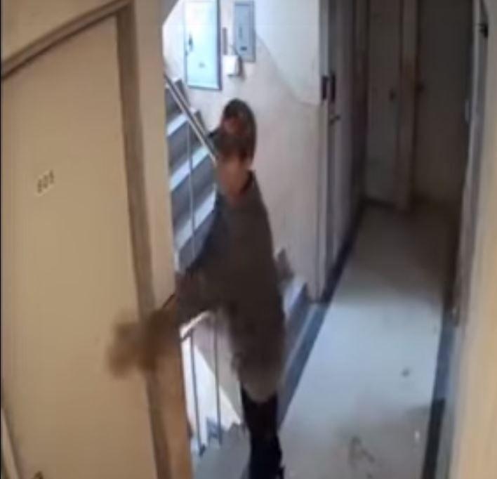 """""""1초만 늦었어도…"""" 신림동 CCTV 남성 긴급체포, 강간미수 적용 검토(종합)"""