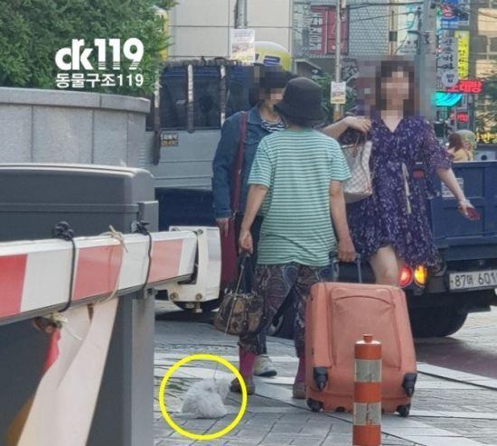 여성이 끈에 강아지를 묶어 끌고 다니는 것으로 알려진 모습. / 사진=동물구조119