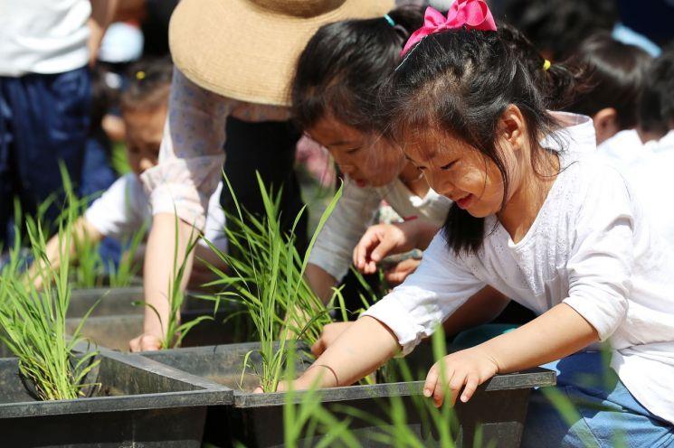 [포토]성동구 어린이 농부들 도심 속 모내기 체험