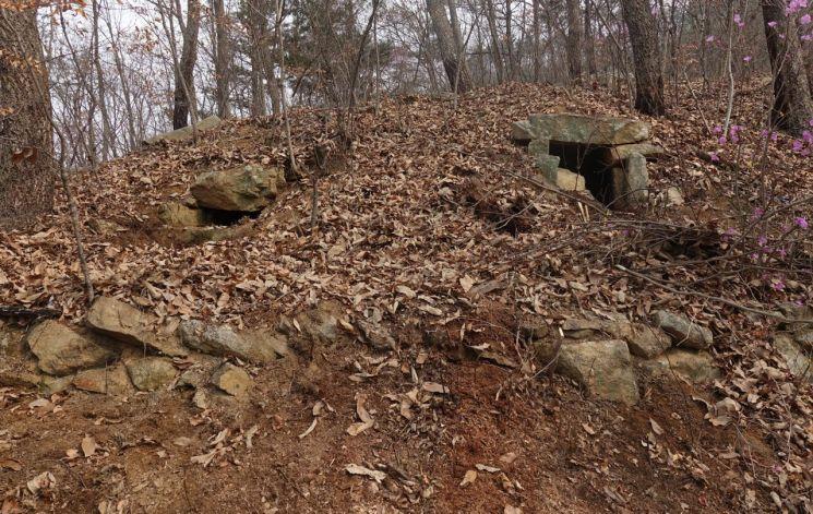 호석에 2기의 석실이 나란히 위치한 고분