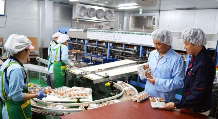 현대그린푸드, 中企표 '프리미엄' 계란 홍콩에 수출