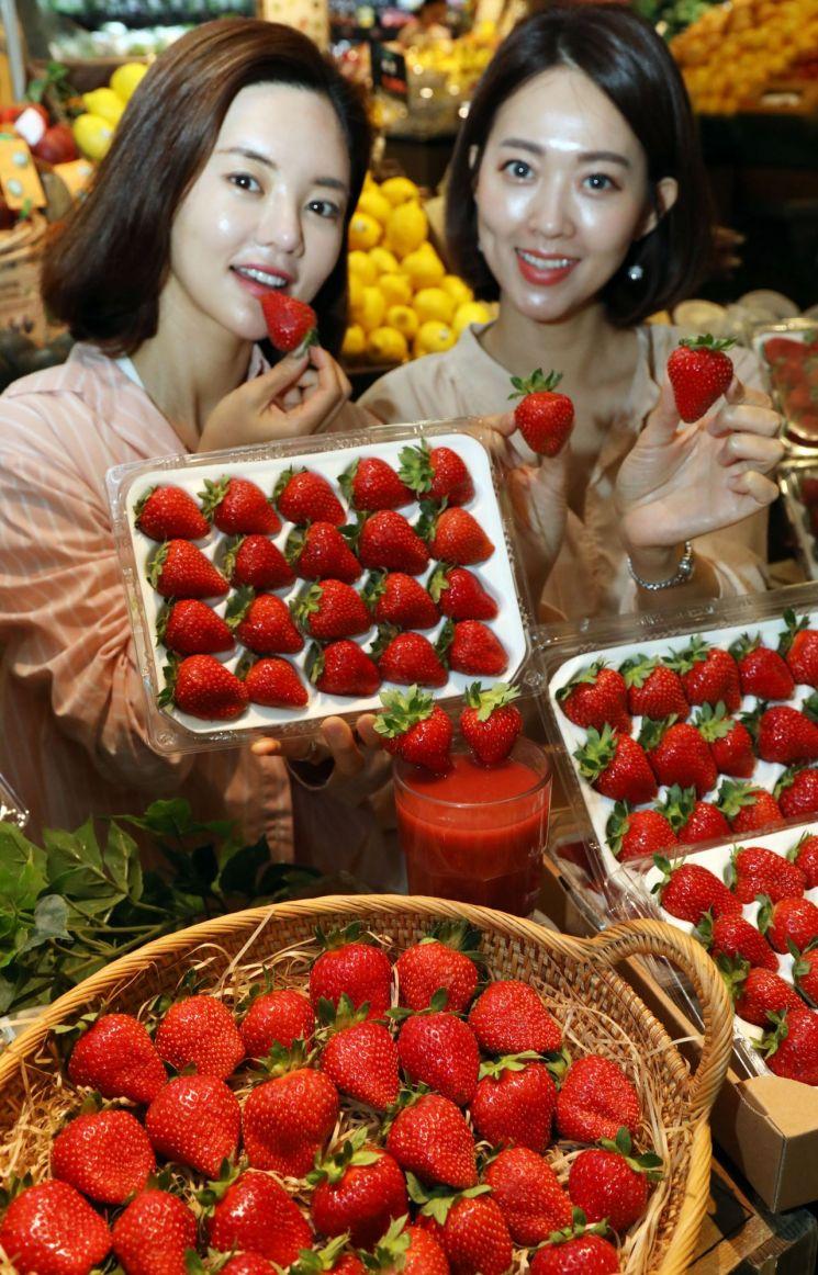 """[포토]""""여름에 시원한 딸기 한 팩 들여가세요"""""""